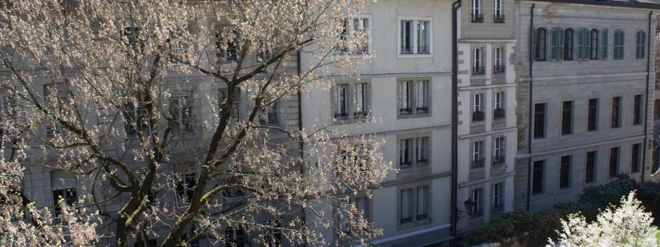 Cabinet Genève